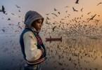 foto do ano - Vencedoras do Concurso de Fotografia de Viagem da National Geographic 2019