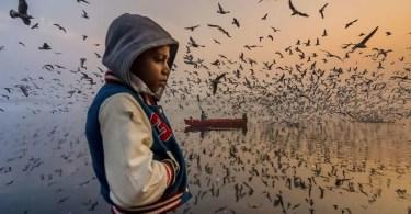 foto do ano - Artista transforma Fusca de verdade em esferas perfeitas