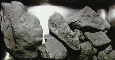 rohas lunares 3 - NASA já alimentou baratas com rochas lunares e injetou sua poeira em ratos