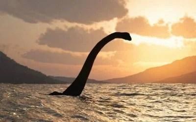 Ness - Estudo aponta que monstro do Lago Ness pode ser uma enguia gigante