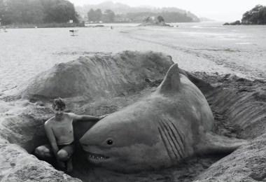 melhor escultor de areia do mundo sand art bull andoni 10 - As impressionantes esculturas realistas de areia de Andoni Bastarrika