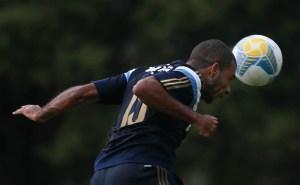 O volante Amaral marcou o primeiro da vitória alviverde por 2 a 1. (Cesar Greco/Ag. Palmeiras/Divulgação)