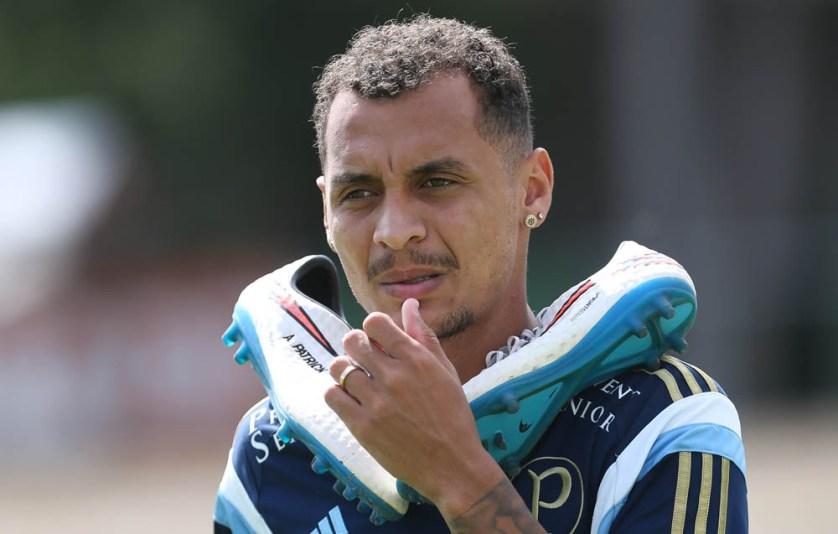 """""""Nada melhor que um jogo dessa grandeza para estar à disposição de novo."""" (Cesar Greco/Ag. Palmeiras/Divulgação)"""