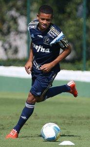 O atacante Gabriel Jesus voltou da Seleção Sub-20 e participou do treino desta manhã (18). (Cesar Greco/Ag. Palmeiras/Divulgação)