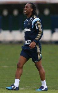 Arouca foi a principal novidade no time montado por Marcelo Oliveira. (Cesar Greco/Ag. Palmeiras/Divulgação)