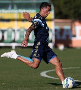 Lucas Barrios não atuou contra Cruzeiro e Coritiba e pode voltar contra o Flamengo. (Cesar Greco/Ag.Palmeiras/Divulgação)