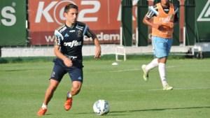 Allione entrou no segundo tempo contra Ponte Preta e participou da atividade nesta quinta (15). (Mídia Palmeirense)