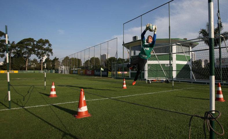 Elenco trabalhou parte física na tarde desta quinta (8) na Academia de Futebol. (Cesar Greco/Ag.Palmeiras/Divulgação)