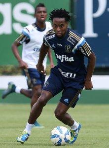 Zé Roberto, recuperado de problemas musculares, voltou a treinar. (Cesar Greco/Ag. Palmeiras/Divulgação)