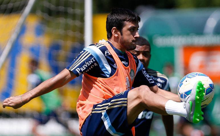 O meia Robinho completou contra o Cruzeiro 50 jogos pelo Verdão. (Cesar Greco/Ag.Palmeiras/Divulgação)