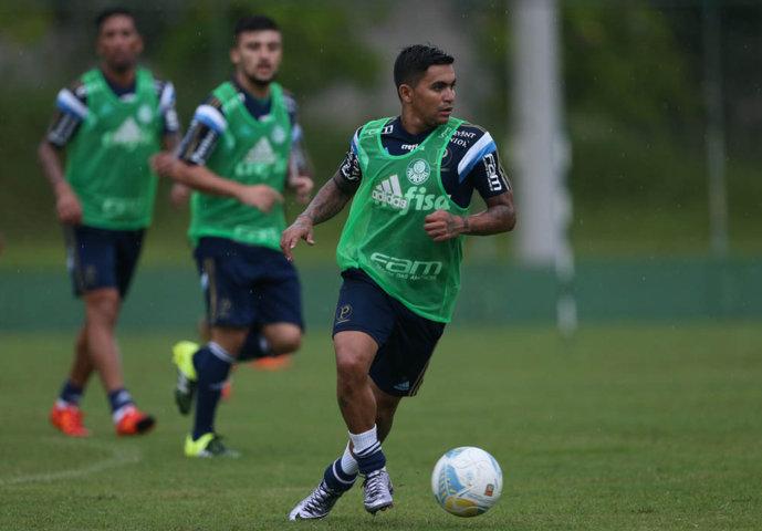 Elenco voltou a treinar em campo reduzido nesta segunda-feira (11). (Cesar Greco/Ag. Palmeiras/Divulgação)