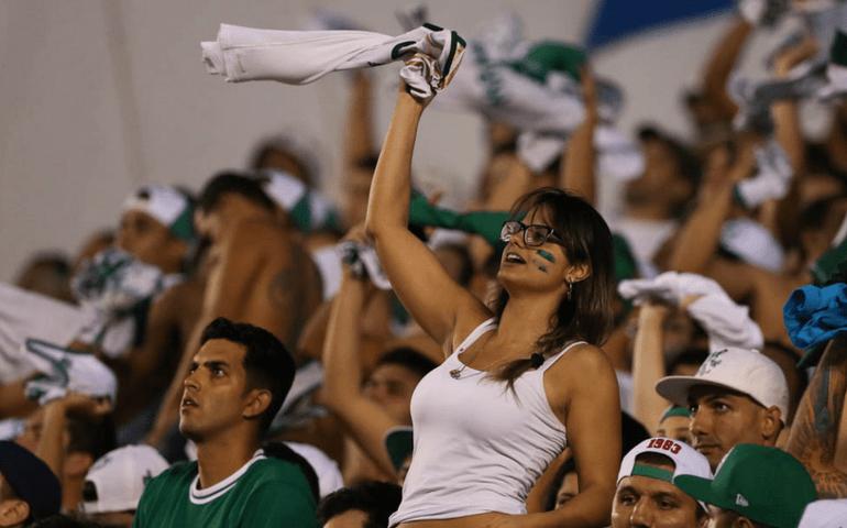 Avanti fecha parcerias visando as torcedores palmeirenses. (Cesar Greco/Ag Palmeiras/Divulgação)