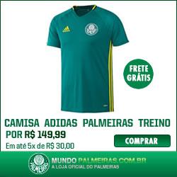 Nova camisa de treino Palmeiras 2016