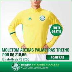 Moletom Adidas Palmeiras Treino