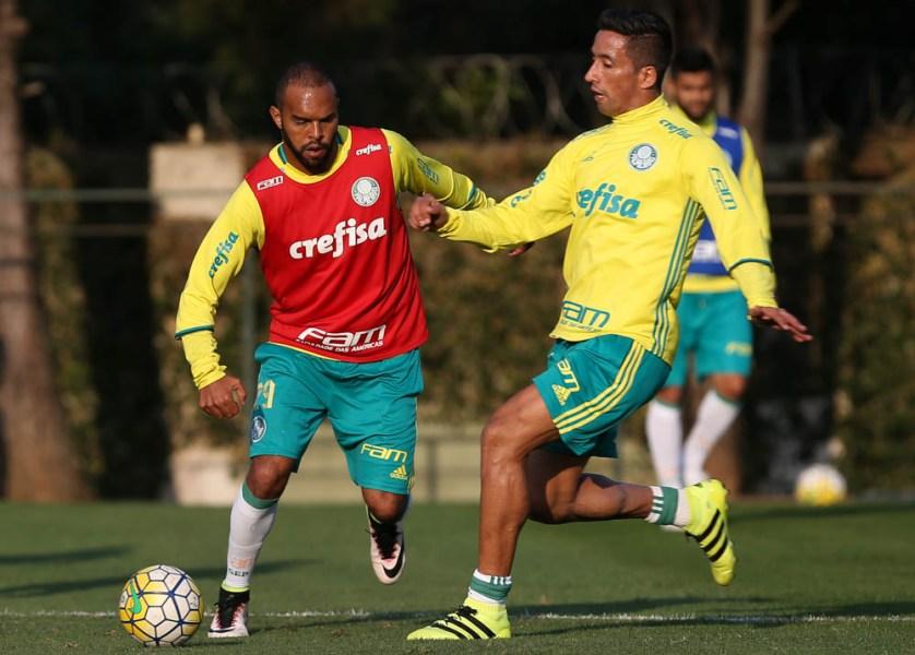 O atacante Alecsandro voltou a s ser convocado. (Cesar Greco/Ag Palmeiras/Divulgação)