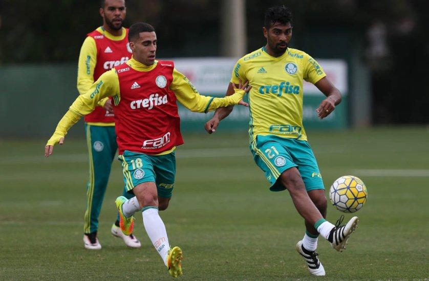 Elenco participou de um treino tático na tarde desta terça-feira (11), na Academia de Futebol. (Cesar Greco/Ag.Palmeiras/Divulgação)