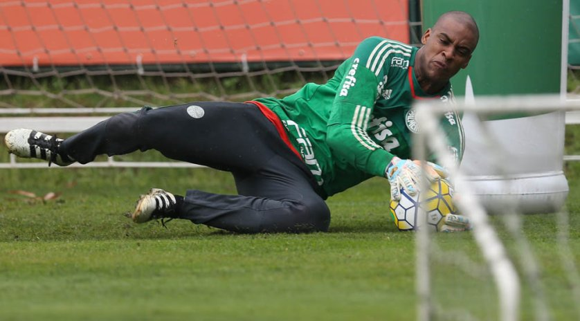 Após suspensão, Jailson deve retornar ao gol do Palmeiras contra o Internacional. (Cesar Greco/Ag.Palmeiras/Divulgação)