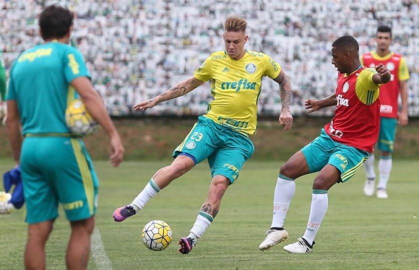 O Palmeiras realizou atividade tática na tarde desta terça-feira (14), na Academia de Futebol. (Cesar Greco/Ag.Palmeiras/Divulgação)