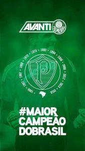 O aplicativo oficial do Palmeiras está de cara nova. (Reprodução)