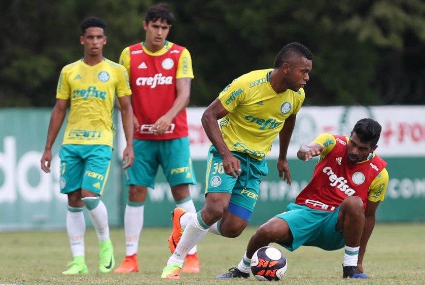 O elenco se reapresentou na tarde desta segunda-feira (20), na Academia de Futebol. (Cesar Greco/Ag Palmeiras/Divulgação)