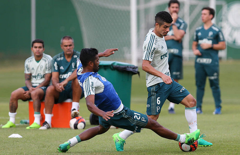 Palmeiras encara o Novorizontino pela partida de volta das quartas de final do Campeonato Paulista 2017. (Cesar Greco/Ag. Palmeiras/Divulgação)