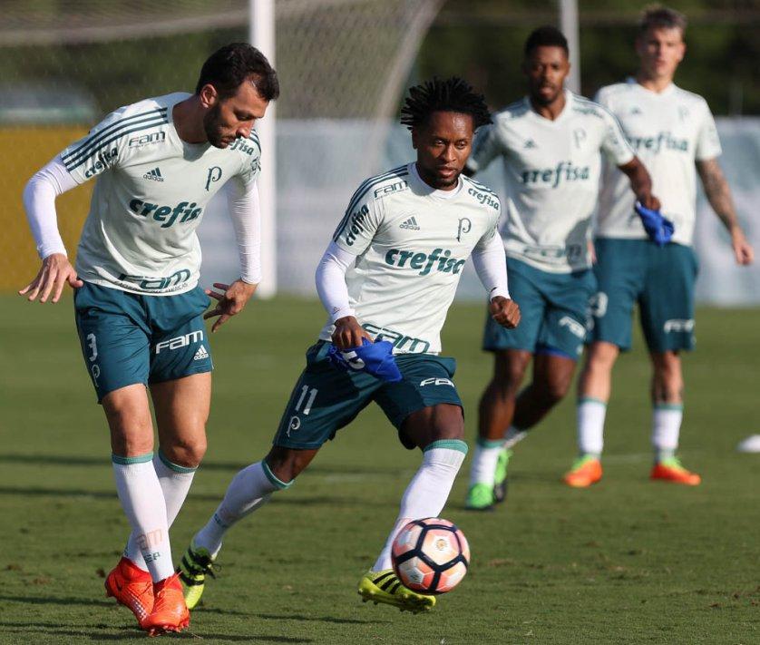 Lateral-esquerdo Zé Roberto e o zagueiro Edu Dracena fizeram transição física. (Cesar Greco/Ag. Palmeiras/Divulgação)