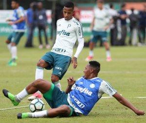 Tchê Tchê concederá entrevista coletiva nesta quinta (11). (Cesar Greco/Ag Palmeiras/Divulgação)
