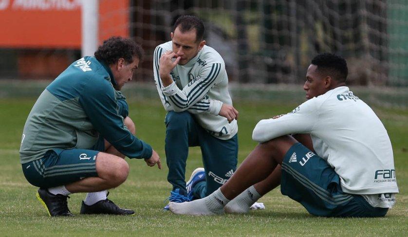 Elenco palmeirense segue preparação para enfrentar Barcelona-EQU. (Cesar Greco/Ag. Palmeiras/Divulgação)