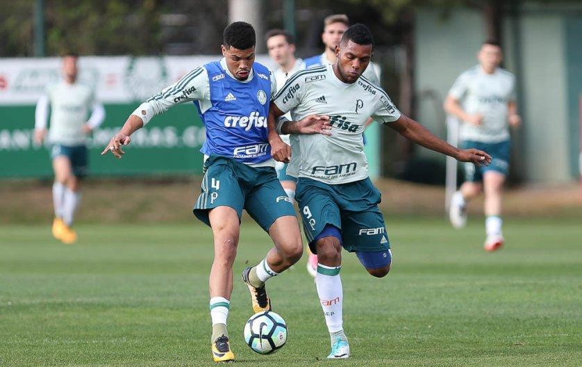 Palmeiras finalizou a preparação para duelar com o Botafogo. (Cesar Greco/Ag. Palmeiras/Divulgação)