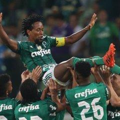 'Palmeiras foi o maior clube da minha carreira', afirma Zé Roberto