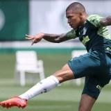 Após classificação na noite de ontem, Palmeiras se reapresenta, na Academia de Futebol