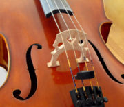 Cello Bridge