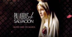 PALABRAS DE SALVACIÓN 15 DE JUNIO