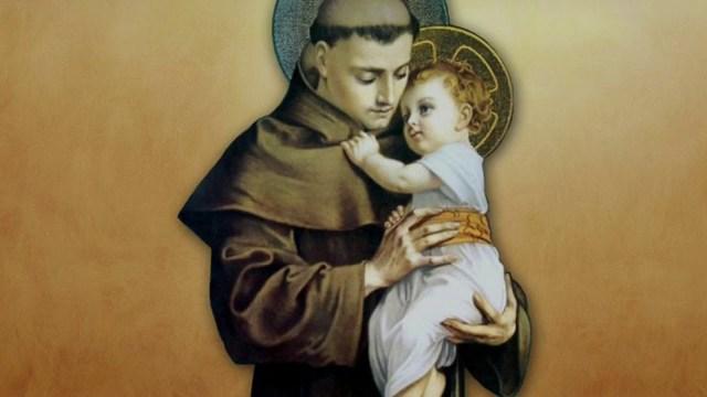 """Hoy se inicia la Novena a San Antonio de Padua, """"el santo de todo el mundo"""""""