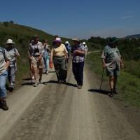 Mbona Walk