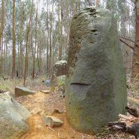 Standing Stones of Karkloof