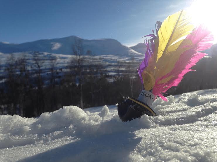Meet the Business # 12: Peteca Nordic