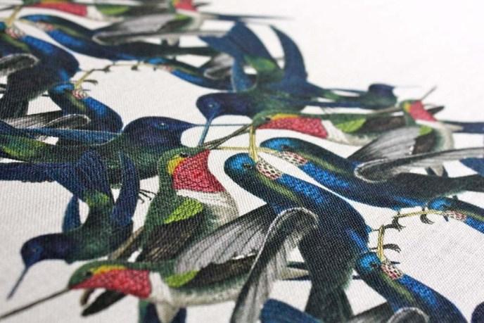 Hummingbird-Stripe