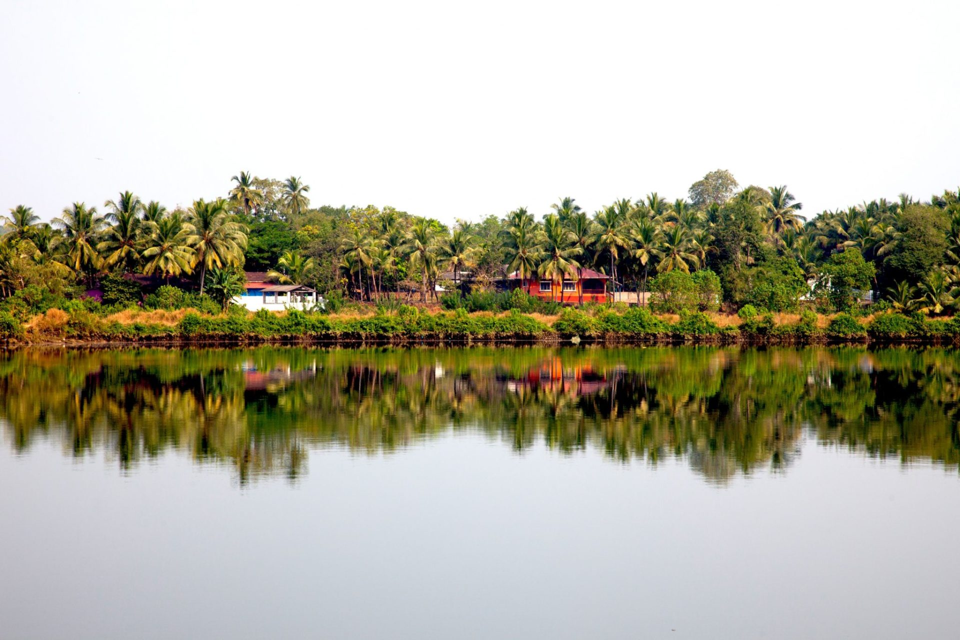 What to Do and See in Goa | India