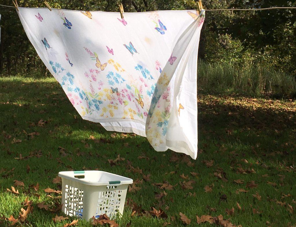 The Clothesline ~ A Simple Pleasure