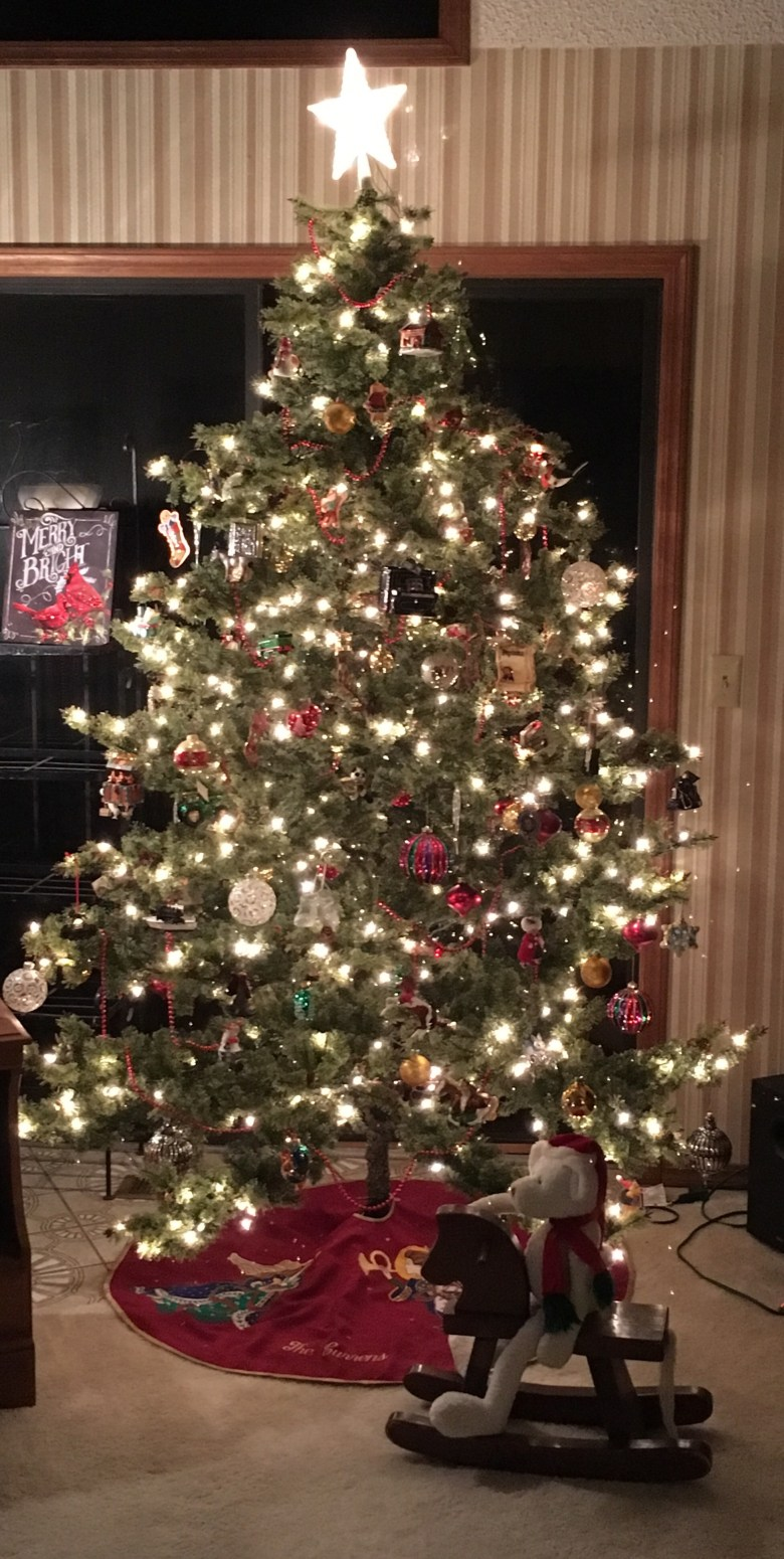 Show Me Your Christmas Tree ~ Powell