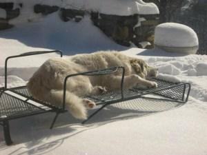 5 Easy Ways to Brighten Winter Days