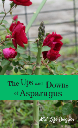 The Ups and Downs of Asparagus