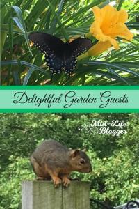 Delightful Garden Guests