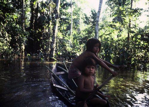 Canoe in the Amazon in Peru