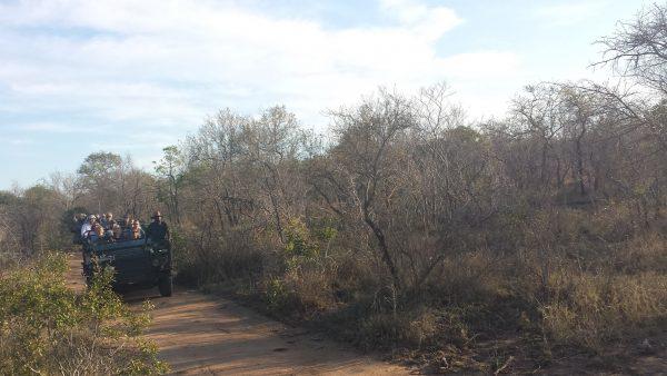 Monwana Game Reserve open landrover