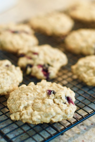 Amazing Blueberry Oatmeal Cookies