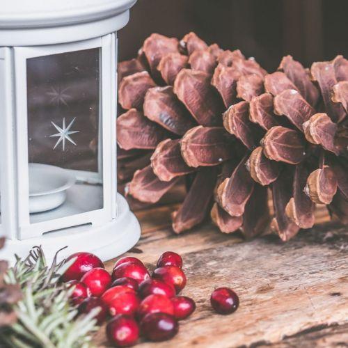 Christmas pinecone and lantern