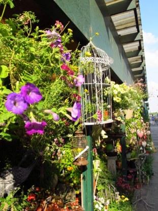 fleuriste along the seine