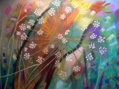 Queen Anne's lace flower on multicolored background.